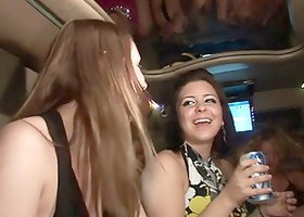 Sexy party girls show their boobs and asses in a limousine